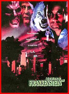 1997 television miniseries directed by Peter Werner