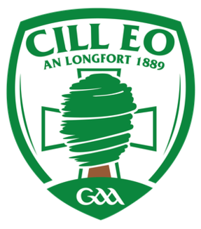 Killoe Young Emmets Gaelic football club, County Longford, Ireland