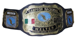 A gold plated championship belt