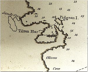 Tilting, Newfoundland and Labrador - Tilting detail from Michael Lane's survey map of Fogo Island, 1787. Look closely to see the key features of the map: Flakes in the outer harbour, sunken rocks (small x-marks) and Dominey's Brook in the northwest part of the Harbour. National Archives of the U.K., WO78/721
