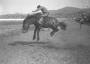 Title: Cowboy riding a bucking bronco at the B...