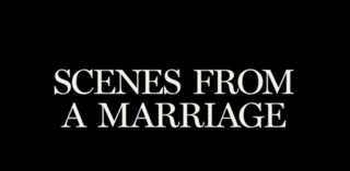 <i>Scenes from a Marriage</i> (American miniseries) American drama television miniseries