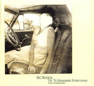 Try to Remember Everything - Image: Try to Remember Everything by Bic Runga