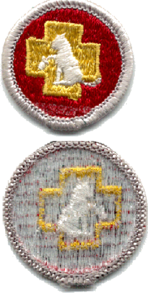 History of merit badges (Boy Scouts of America) - Manufacturing error on the First Aid to Animals merit badge, Type H, 1972
