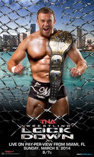Lockdown (2014) 2014 Total Nonstop Action Wrestling pay-per-view event