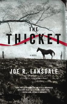 Image result for book cover thicket lansdale