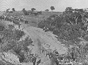 Wagons crossing Amatikulu drift on the way to Eshowe