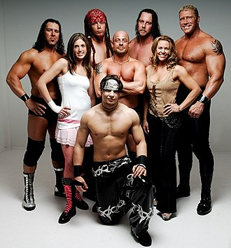 Wrestling Reality - Image: Wikipicwr 1