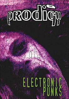 Image result for electronic punks prodigy