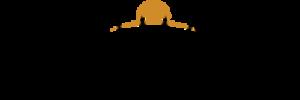 Teen Mania Ministries - Image: Teen Mania Logo 2015