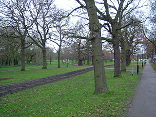 Tooting Commons two adjacent areas of common land in south west London, England