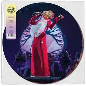 Vulnicura Live - Image: Vulnicura Live (Rough Trade picture disc vinyl package)