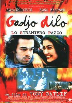 The Crazy Stranger - Film poster
