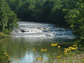 Greenville Creek.jpg