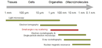 Biological small-angle scattering - Resolution range coverage by SAXS compared to other techniques for structure determination