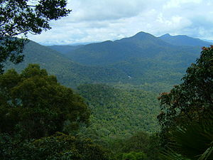 Endau-Rompin National Park - View from the top of Janing Barat.