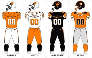 2010 BC Lions season NFL American football season