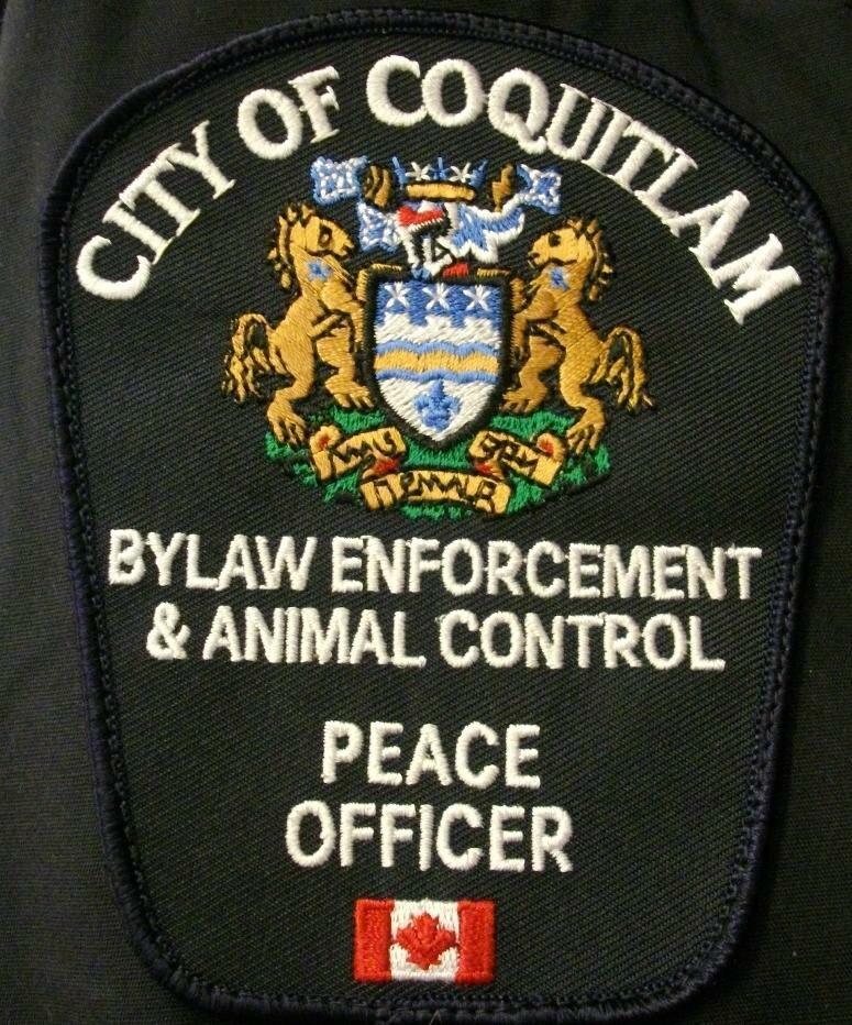 Coq bylaws
