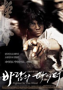 Fighter in the Wind movie poster.jpg