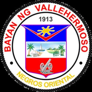 Vallehermoso, Negros Oriental - Image: Vallehermoso Negros Oriental