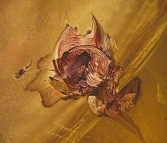 Vladimir Bougrine - detail of Valdimir's style