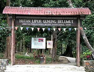 Mount Belumut - Entrance to gunung belumut