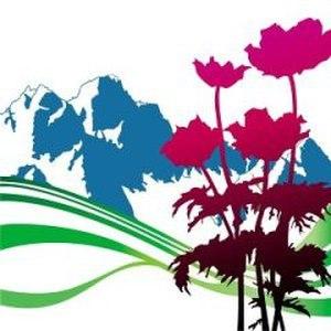 International (New Order album) - Image: International New Order