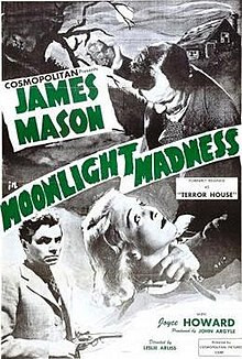 Moonlight Madness poster.jpg