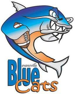 Evansville BlueCats