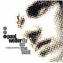 Paul Weller Fly On the Wall.JPG