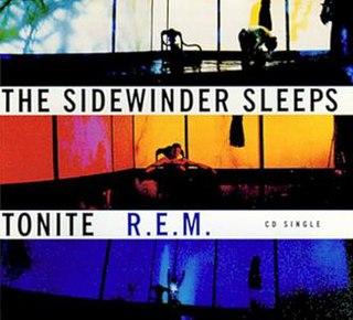 The Sidewinder Sleeps Tonite 1993 single by R.E.M.