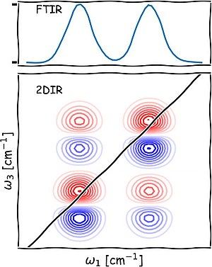 Schematic Of A 2d Ir Spectrum The Blue Circles On Diagonal Correspond To Bleaching Ground State Red Absorption