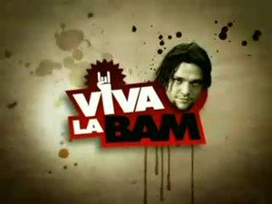 Viva La Bam - Title card from Seasons 2–5