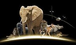 Saving Planet Earth - Wikipedia