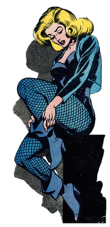 Black Canary (Dinah Drake) Fictional character