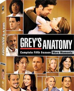 <i>Greys Anatomy</i> (season 5) season of television series