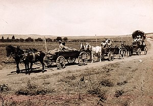 Nahalal - September 11, 1921 – The first settlers arrive by horse and wagon from Mikveh Israel