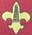 Scout Association of Qatar.png