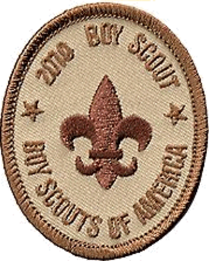 Ranks in the Boy Scouts of America - An example 2010 rank badge.