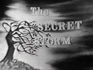 <i>The Secret Storm</i> television series