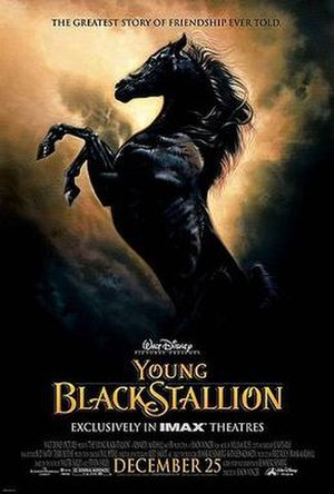 The Young Black Stallion - Theatrical release poster