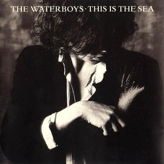 This Is the Sea - Image: This Is The Sea Waterboys Album Cover