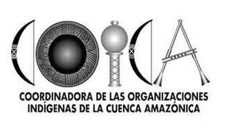 Coordinator of Indigenous Organizations of the Amazon River Basin - COICA logo