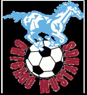 Chicago Mustangs (1967–68) - Image: Chicago Mustangs logo