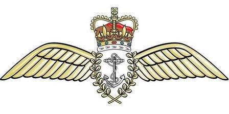 FleetAirArm wings