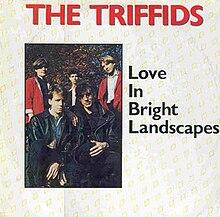 The Triffids - Raining Pleasure