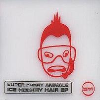 Ice Hockey Hair album cover