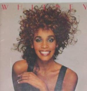 Moment of Truth World Tour - Image: Whitneytour 87