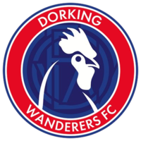 Image result for dorking wanderers