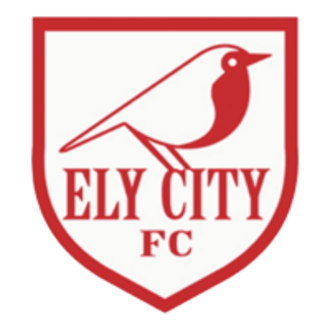 Ely City F.C. - Image: Ely City logo